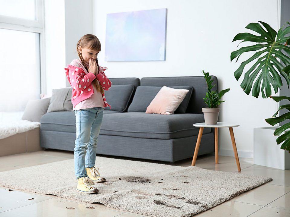 pranie dywanów tapicerki płock firma sprzątająca
